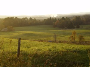 Pasture in the Green Mountain State